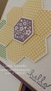 hexagon flower closeup