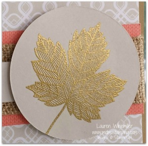 maple leaf closeup